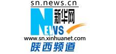新华网陕西频道